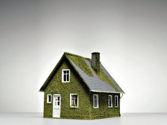 Экологически чистый дом.